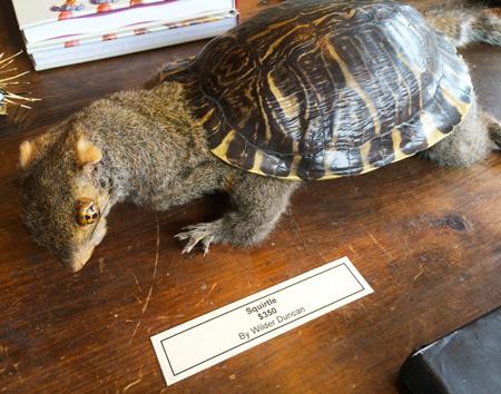 uppstoppade ekorre med sköld från en sköldpadda