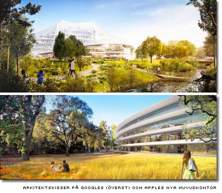 arkitektskisser av Googles (överst) och apples nya huvudkontor